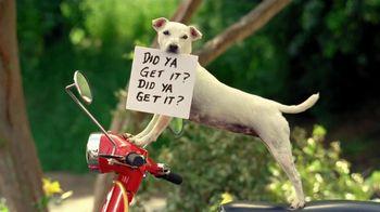 Pup-Peroni TV Spot, 'Photo Shoot'
