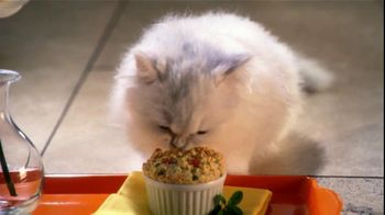 Fancy Feast Gourmet Cat Food TV Spot, 'Mornings' - Thumbnail 8