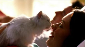 Fancy Feast Gourmet Cat Food TV Spot, 'Mornings' - 1279 commercial airings