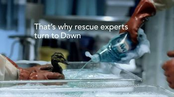 Dawn TV Spot, 'Saving Wildlife ' - Thumbnail 6