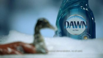 Dawn TV Spot, 'Saving Wildlife ' - Thumbnail 7
