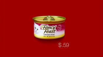 Target TV Spot For Fancy Feast - Thumbnail 4