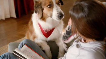 Sergeant?s Pronyl OTC Max TV Spot, 'Pet Protection For Less' - Thumbnail 8
