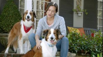 Sergeant?s Pronyl OTC Max TV Spot, 'Pet Protection For Less' - 621 commercial airings