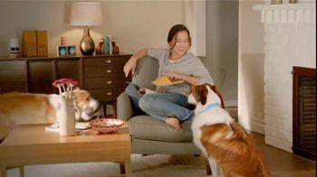 Sergeant?s Pronyl OTC Max TV Spot, 'Pet Protection For Less' - Thumbnail 7