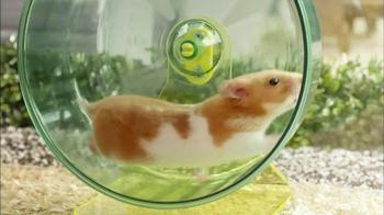 Netflix TV Spot, 'Hamster Talk' - Thumbnail 9