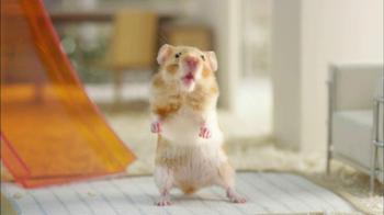 Netflix TV Spot, 'Hamster Talk' - Thumbnail 3