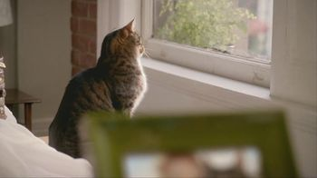 Purina Cat Chow TV Spot, 'Kimi and Atti' - Thumbnail 3