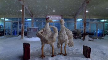 Freezing Chickens thumbnail