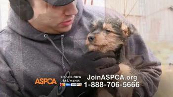 ASPCA TV Spot, 'This Winter' Featuring Allison Cardona - Thumbnail 7