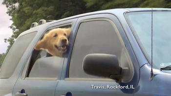 Shelter Insurance TV Spot, 'Car Dogs' - Thumbnail 2