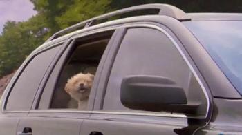 Shelter Insurance TV Spot, 'Car Dogs' - Thumbnail 6