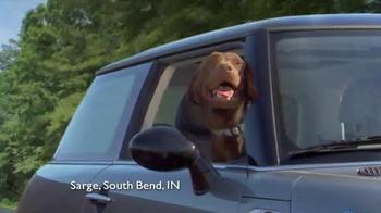 Shelter Insurance TV Spot, 'Car Dogs' - Thumbnail 9
