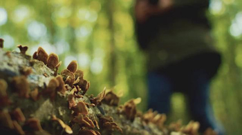 Samsung NX1 TV Spot, 'Capture the Essence of Nature' Feat. Marcus Reichmann - Thumbnail 3