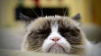 Friskies TV Spot, 'Hard To Be a Cat at Christmas' - Thumbnail 1