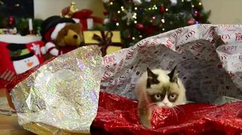 Friskies TV Spot, 'Hard To Be a Cat at Christmas' - Thumbnail 5
