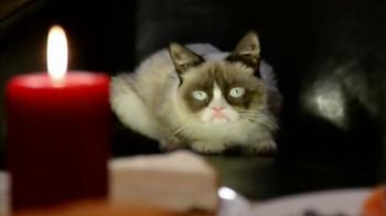 Friskies TV Spot, 'Hard To Be a Cat at Christmas' - Thumbnail 6