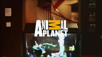 Macy's Black Friday Sale TV Spot, 'Animal Planet' - Thumbnail 9
