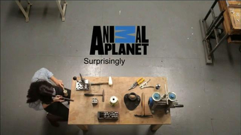 FingerHut.com TV Spot, 'Animal Planet: Seahorse Necklace' - Thumbnail 8