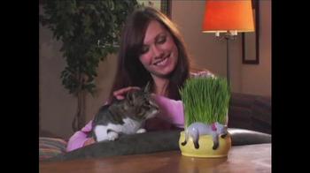 Chia Pet TV Spot, 'Holiday Gifts' - Thumbnail 8