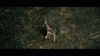 Into the Woods - Alternate Trailer 12