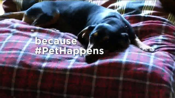 Pet Happens: Dachshund thumbnail