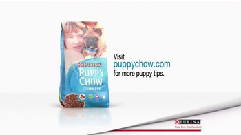 Purina Puppy Chow TV Spot, 'Bandit's Fun in the Kitchen' - Thumbnail 10