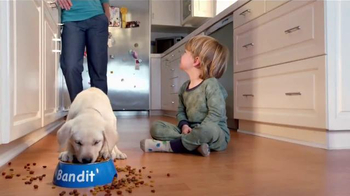 Purina Puppy Chow TV Spot, 'Bandit's Fun in the Kitchen' - Thumbnail 9