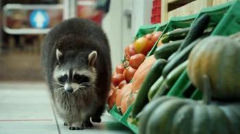 Farm Heroes Saga TV Spot, 'Release the Magic' - Thumbnail 3