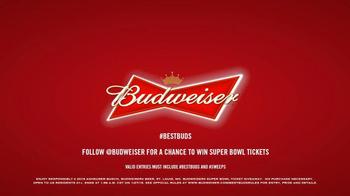 Budweiser TV Spot, 'Super Bowl 2015 Announcement: Lost Dog' - Thumbnail 10