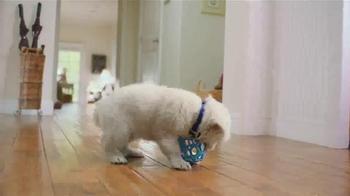PetSmart TV Spot, 'Keep It Going Strong' - Thumbnail 3