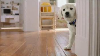 PetSmart TV Spot, 'Keep It Going Strong' - Thumbnail 4