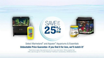 PetSmart TV Spot, 'Fish Friends' - Thumbnail 7
