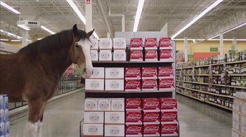 Budweiser Super Bowl 2015 Preview TV Spot, 'Clydesdale Beer Run' - Thumbnail 10