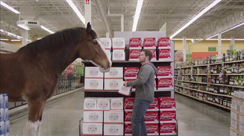 Budweiser Super Bowl 2015 Preview TV Spot, \'Clydesdale Beer Run\'