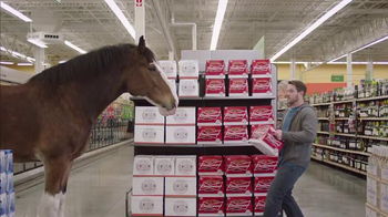 Budweiser Super Bowl 2015 Preview TV Spot, 'Clydesdale Beer Run' - Thumbnail 9