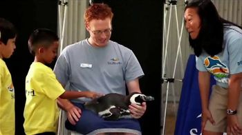 SeaWorld TV Spot, 'Make SeaWorld Your Classroom'