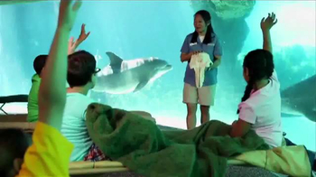 SeaWorld TV Spot, 'Make SeaWorld Your Classroom' - Thumbnail 1