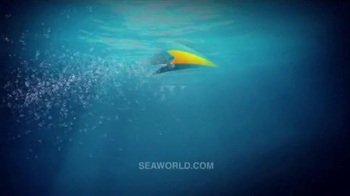 SeaWorld TV Spot, 'Make SeaWorld Your Classroom' - Thumbnail 8