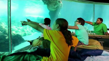 SeaWorld TV Spot, 'Make SeaWorld Your Classroom' - Thumbnail 4