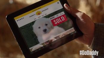 GoDaddy Super Bowl 2015 TV Spot, 'Journey Home' - Thumbnail 8