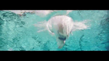 Audi TV Spot, 'Swim' - Thumbnail 3