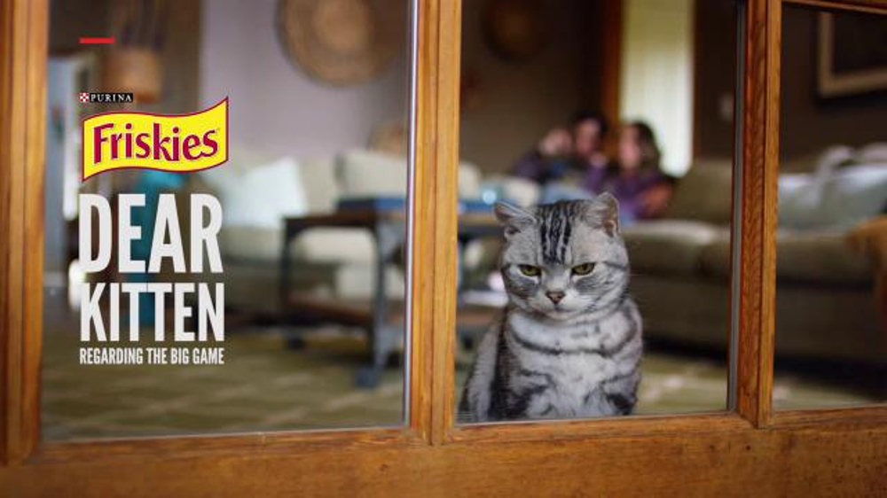 friskies super bowl teaser tv commercial dear kitten regarding