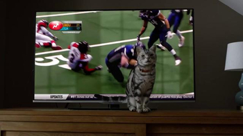 Friskies Super Bowl Teaser TV Spot, 'Dear Kitten: Regarding the Big Game' - Thumbnail 10