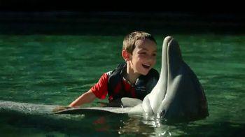 The Hawaiian Islands TV Spot, 'With the Dolphins' Featuring Matt Kuchar - 41 commercial airings