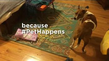 Bissell TV Spot, 'Pet Happens' - Thumbnail 6
