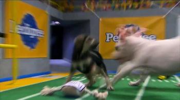 Pedigree TV Spot, 'Puppy Bowl XI' - Thumbnail 1