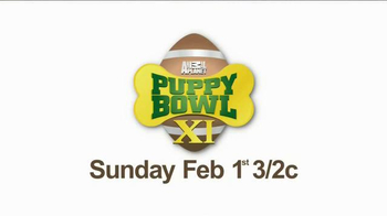 Pedigree TV Spot, 'Puppy Bowl XI' - Thumbnail 10