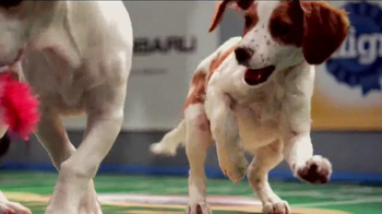 Pedigree TV Spot, 'Puppy Bowl XI' - Thumbnail 2