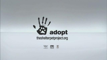 The Shelter Pet Project TV Spot, 'Meet Jules, Amazing Shelter Pet!' - Thumbnail 10